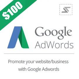 $100 / 75 EUR / 75 GBP Google