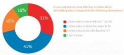 BrightRoll survey 2015 online