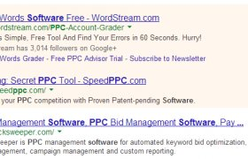 What is PPC Management?