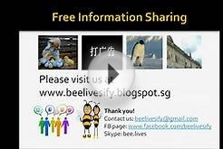 BeeLives - Business Model 1 (Free Advertising)
