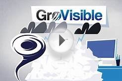GroVisible, Online Marketing Company, Stress Free