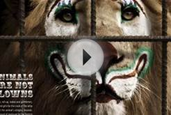 LPDA: Lion | Ads of the World™